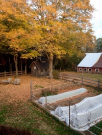 Cranberry Hill Farm